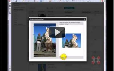Gallery Posting and Manipulation with NextGen WordPress